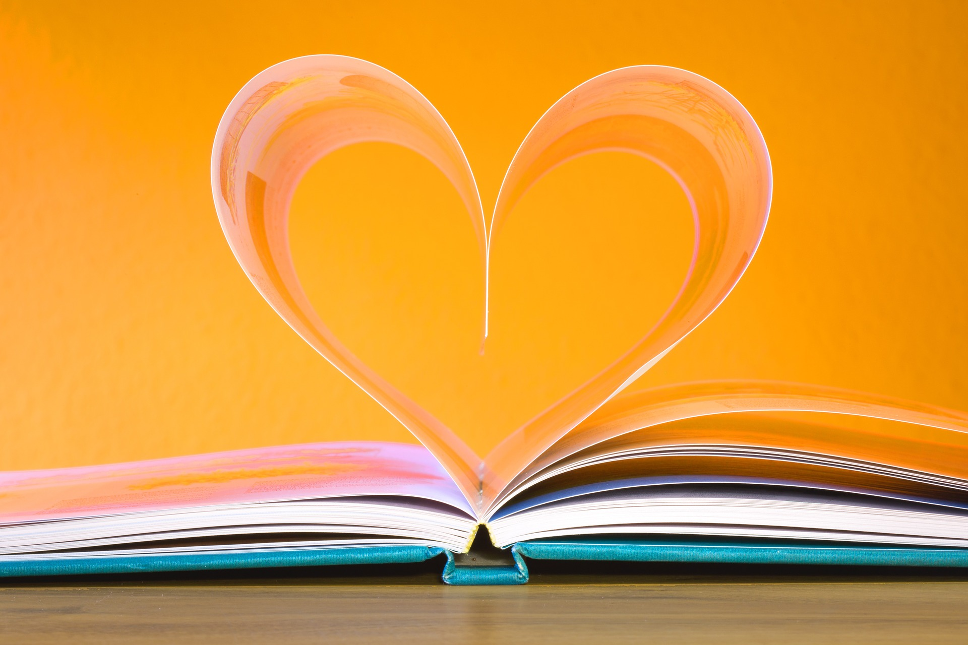 Open book with 2 pages folded to form a heart shape