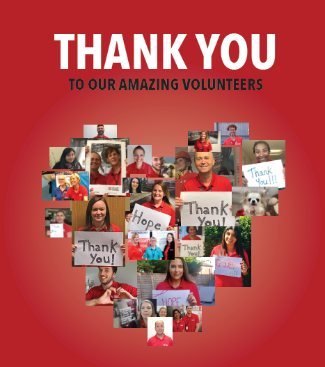 Volunteers of Lancashire we thank and celebrate you. Image is a heart collage of LVP staff holding thank you signs